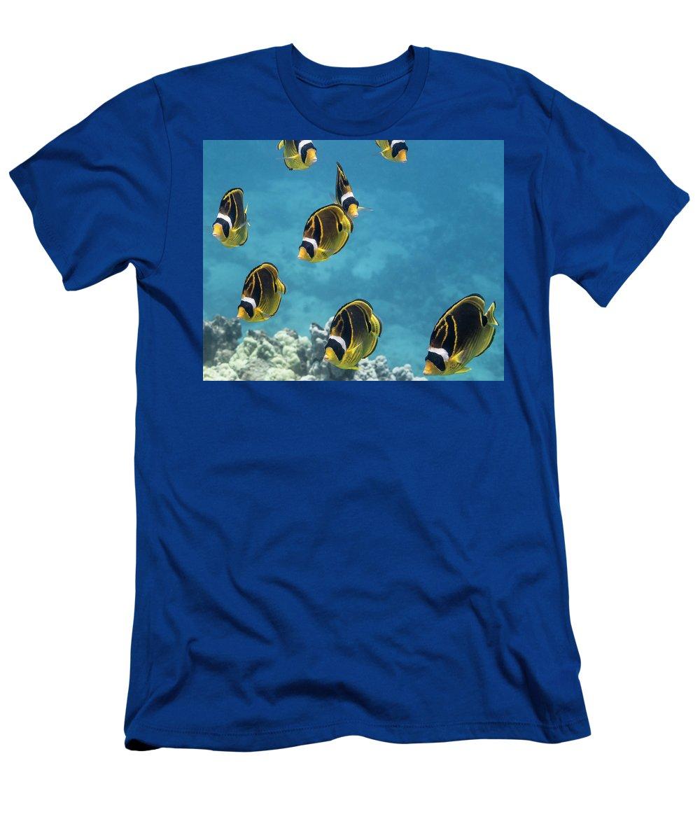 Chaetodontidae T-Shirt featuring the photograph Racoon Butterflyfish Chaetodon Lunula by Thomas Kline