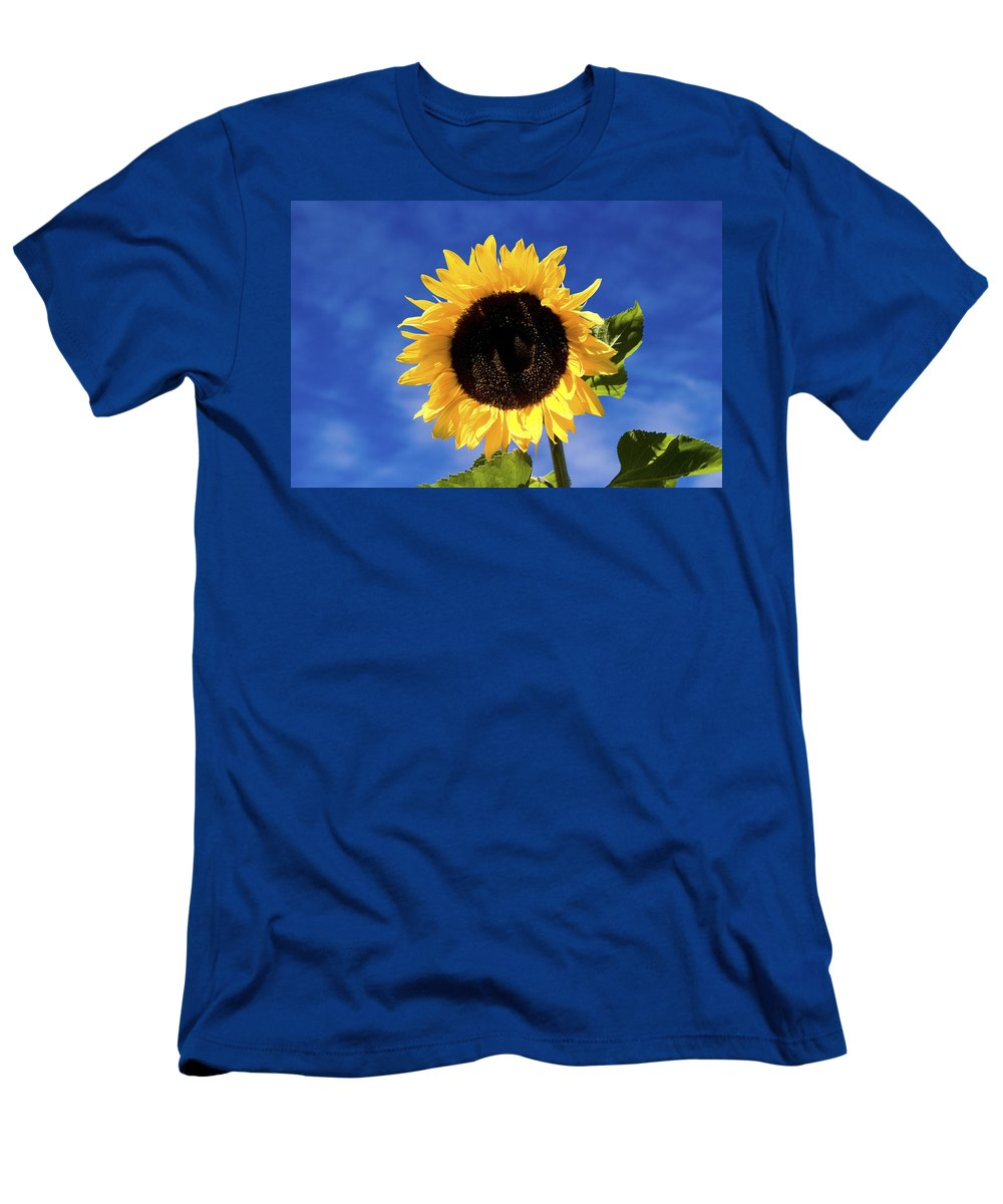 Flower Men's T-Shirt (Athletic Fit) featuring the photograph Sunflower by Peter Lloyd