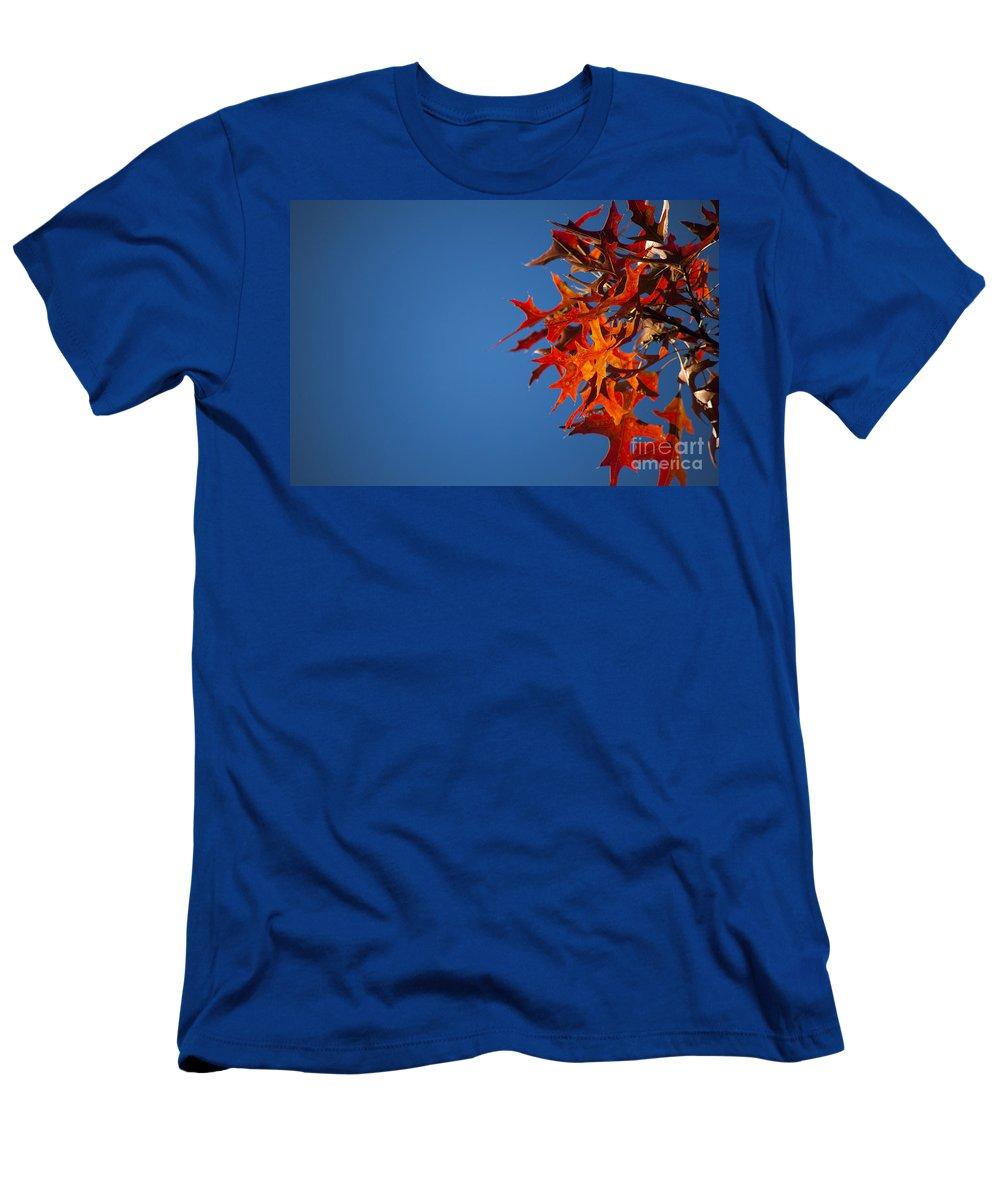 Minnesota Men's T-Shirt (Athletic Fit) featuring the photograph Autumn Blue by Wayne Moran