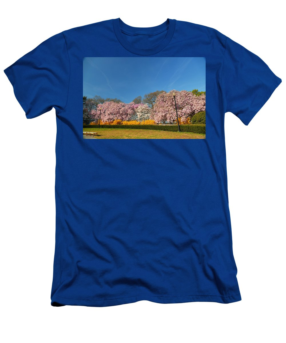 Architectural Men's T-Shirt (Athletic Fit) featuring the photograph Cherry Blossoms 2013 - 052 by Metro DC Photography