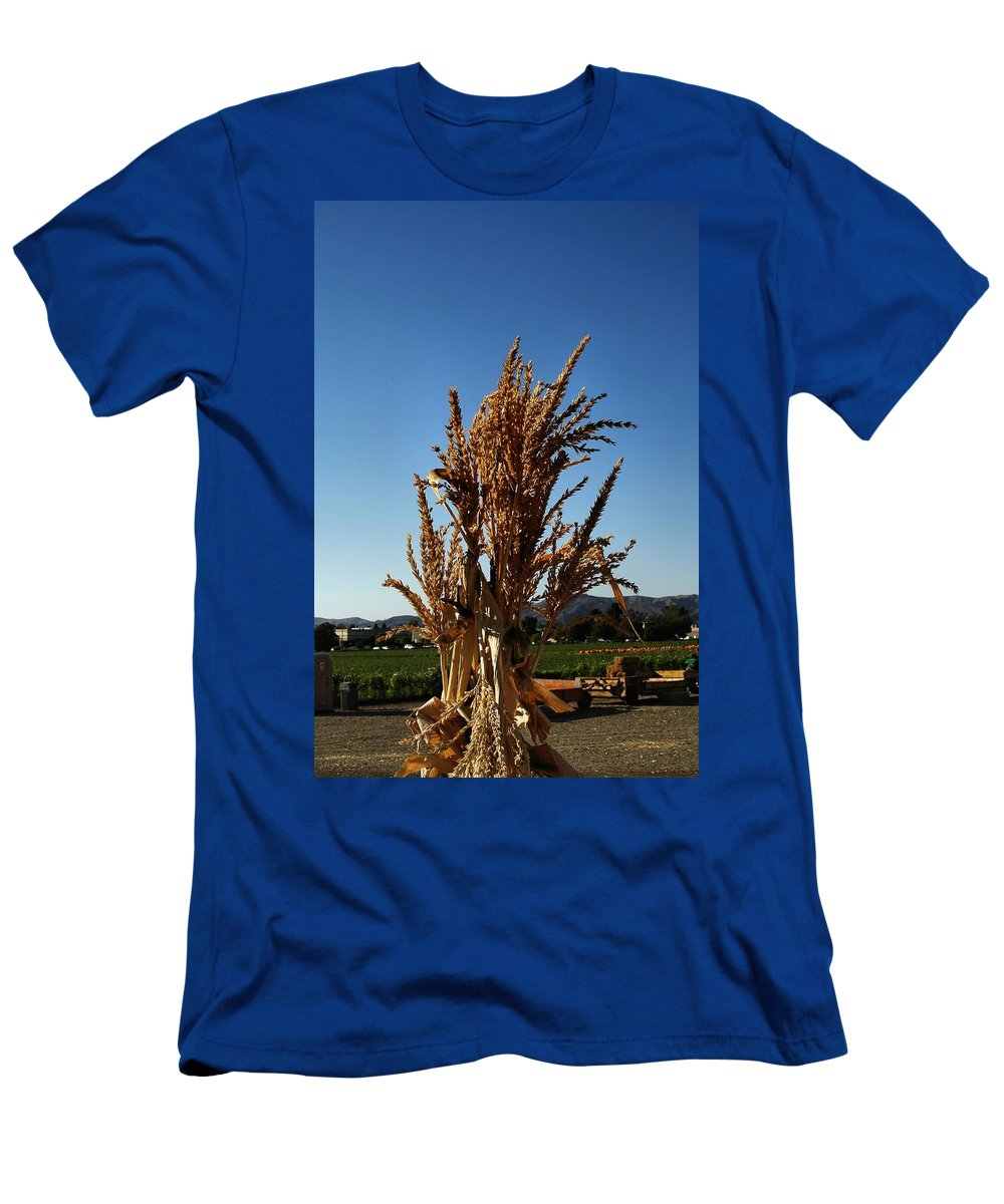 Fall Sdeason Men's T-Shirt (Athletic Fit) featuring the photograph Corn Top by Michael Gordon