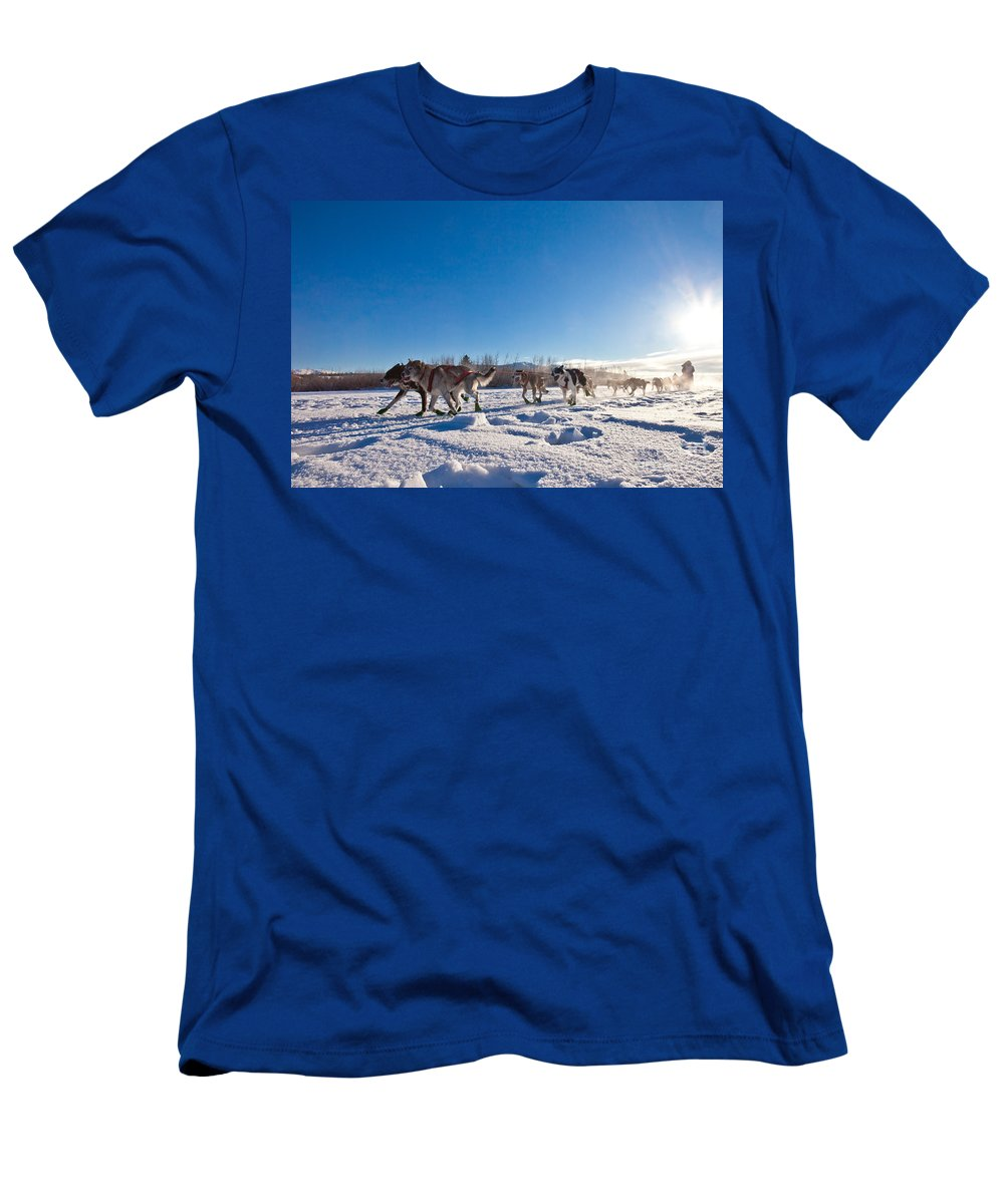 Action Men's T-Shirt (Athletic Fit) featuring the photograph Dog Team Pulling Sled by Stephan Pietzko