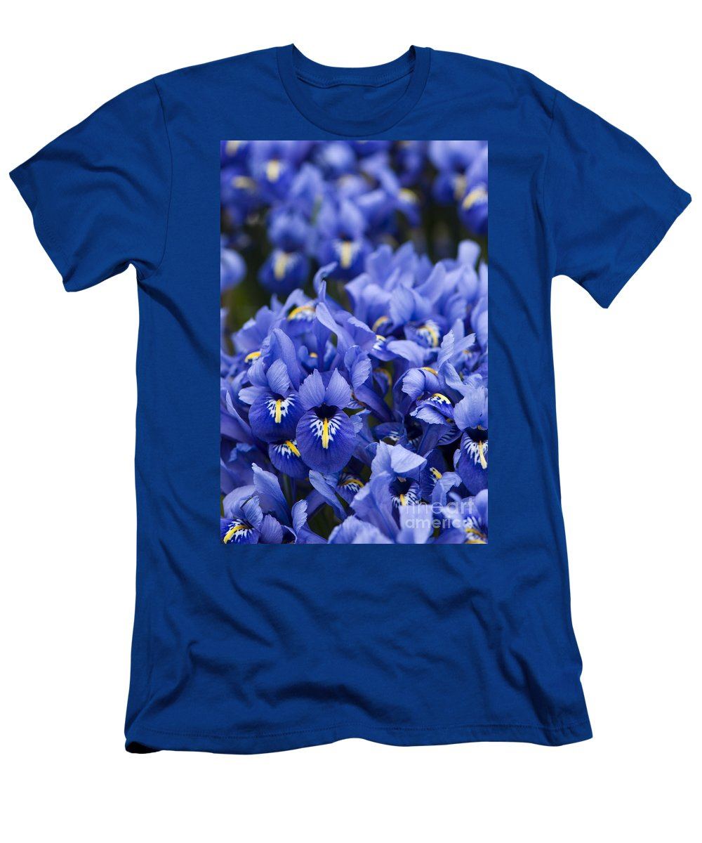 Iris Men's T-Shirt (Athletic Fit) featuring the photograph Got The Iris Blues by Anne Gilbert