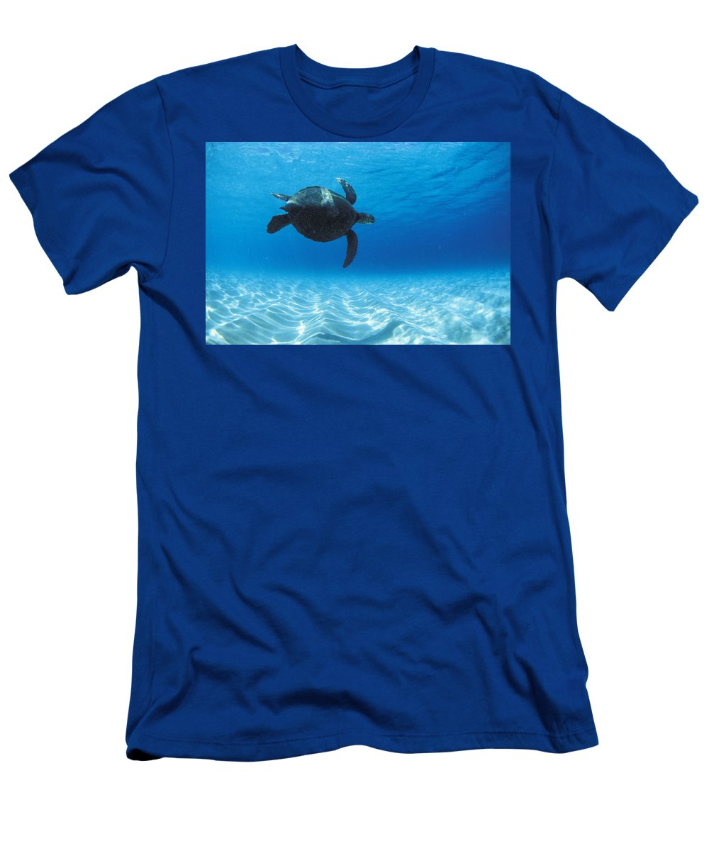 Under Water Men's T-Shirt (Athletic Fit) featuring the photograph Keiki Turtle by Sean Davey