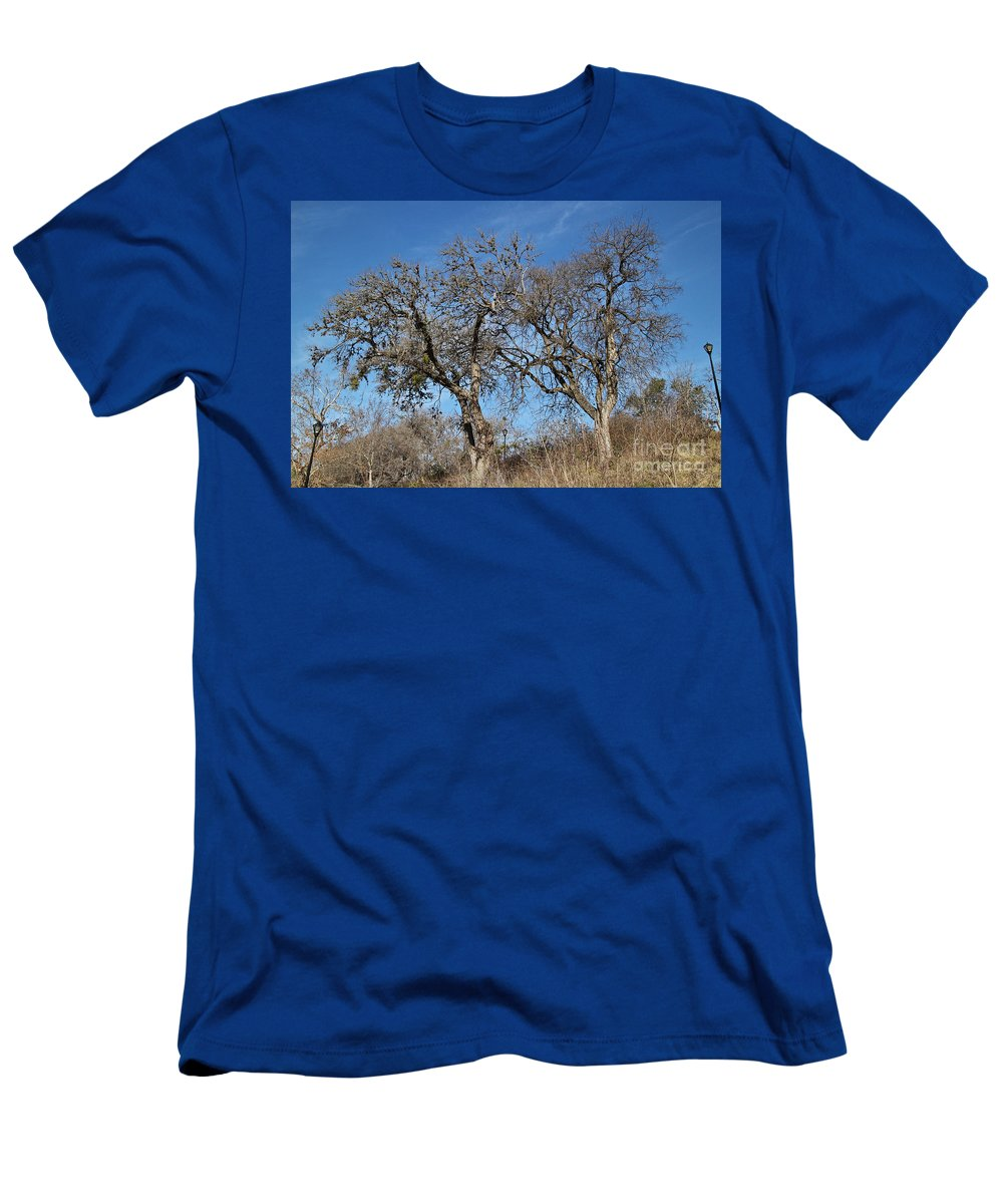Light Posts Men's T-Shirt (Athletic Fit) featuring the photograph Light Posts And Trees by Gary Richards