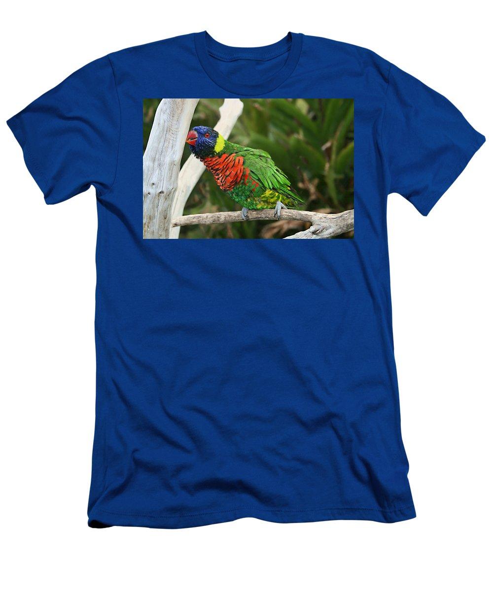 Pretty Bird Men's T-Shirt (Athletic Fit) featuring the photograph Pretty Bird by Ellen Henneke