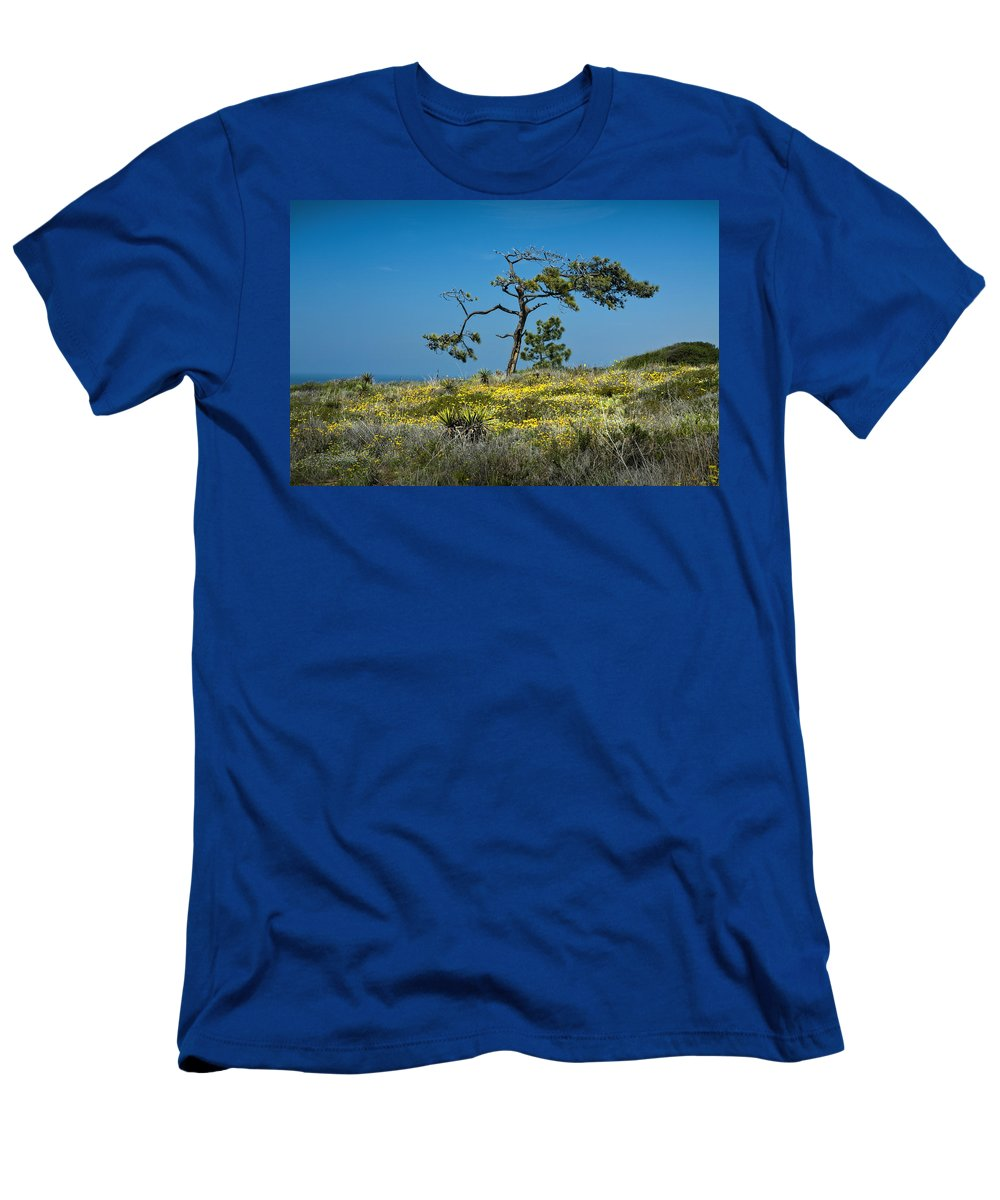 Art Men's T-Shirt (Athletic Fit) featuring the photograph Torrey Pine On The Cliffs At Torrey Pines State Natural Reserve by Randall Nyhof