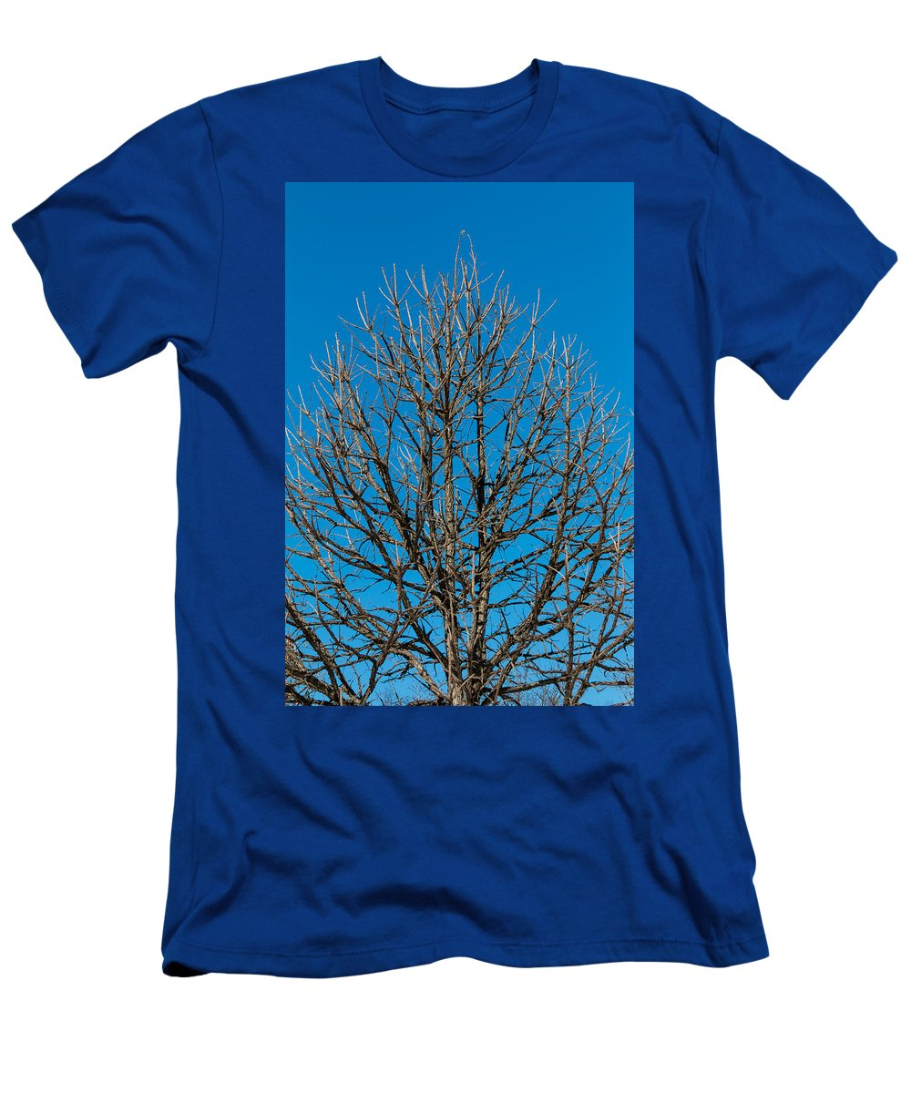 Autumn Men's T-Shirt (Athletic Fit) featuring the photograph Tree Profile by Gaurav Singh