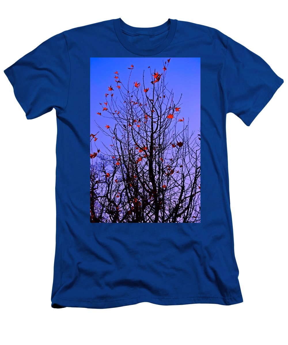 Tree Men's T-Shirt (Athletic Fit) featuring the photograph Leaves 3 by Pamela Cooper