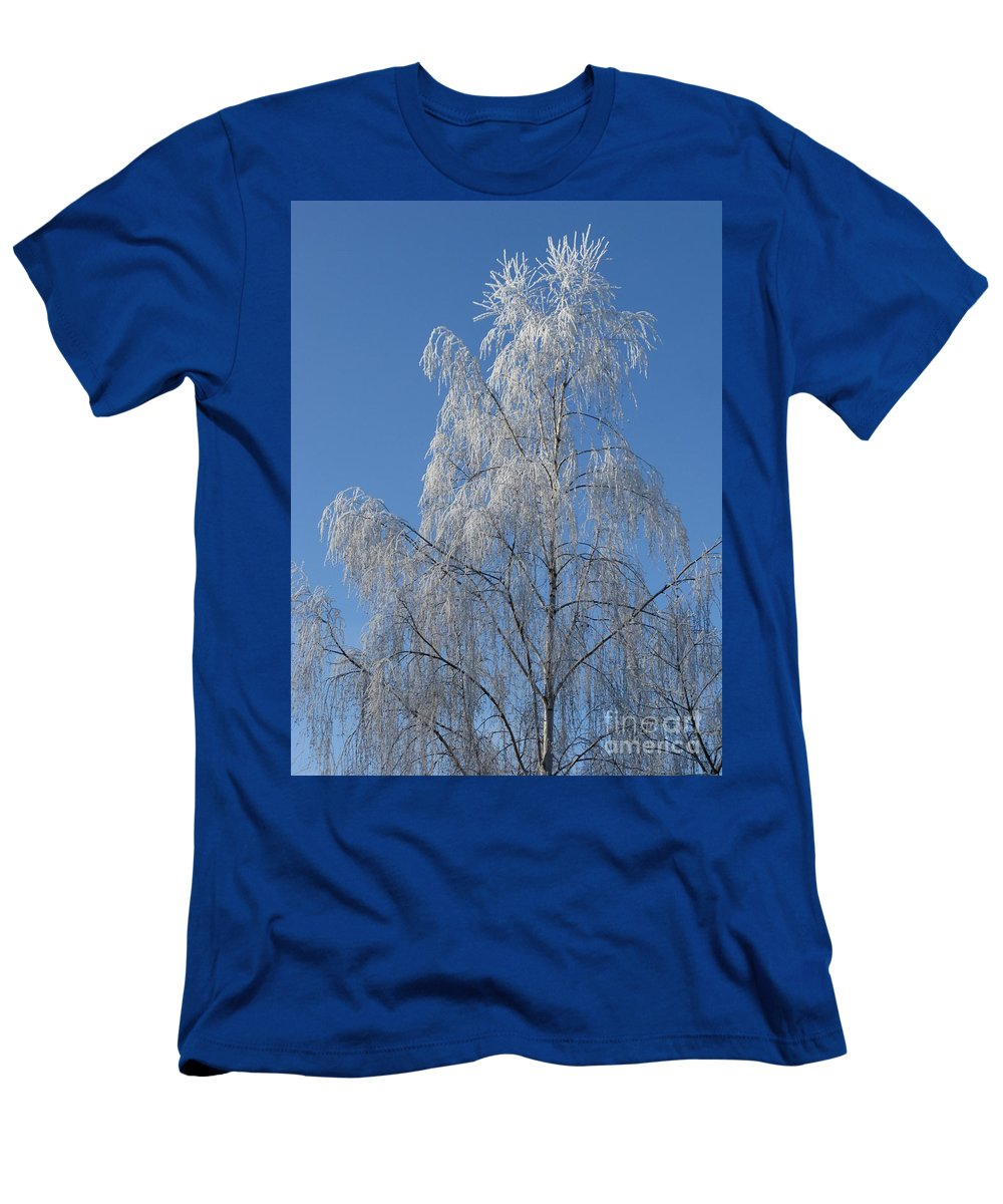 Winter Men's T-Shirt (Athletic Fit) featuring the photograph Birch In Frost. by Ausra Huntington nee Paulauskaite