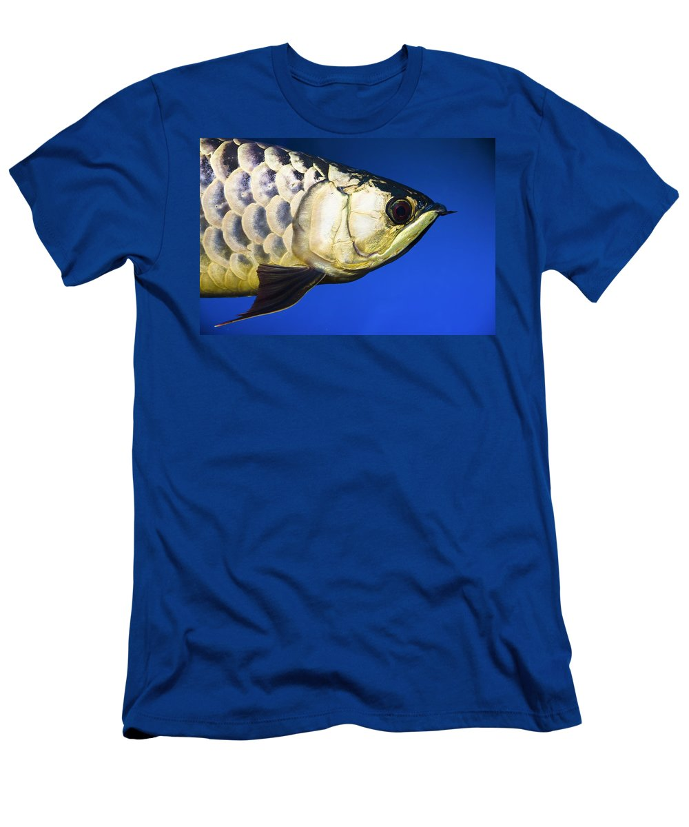 Animals Men's T-Shirt (Athletic Fit) featuring the photograph Closeup Of A Fish by Steve Nagy