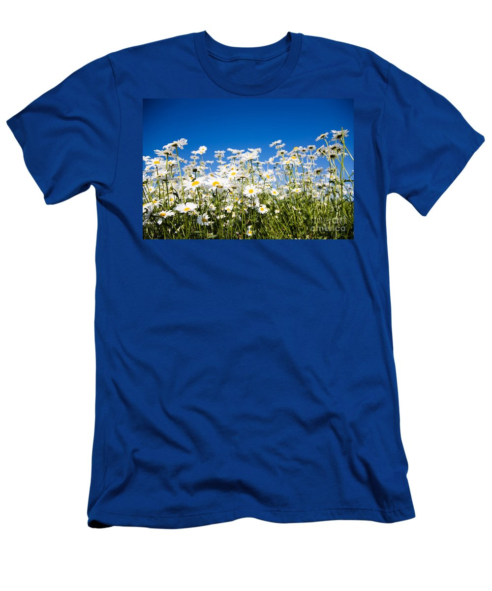 Daisy Men's T-Shirt (Athletic Fit) featuring the photograph Daisies by Kati Finell