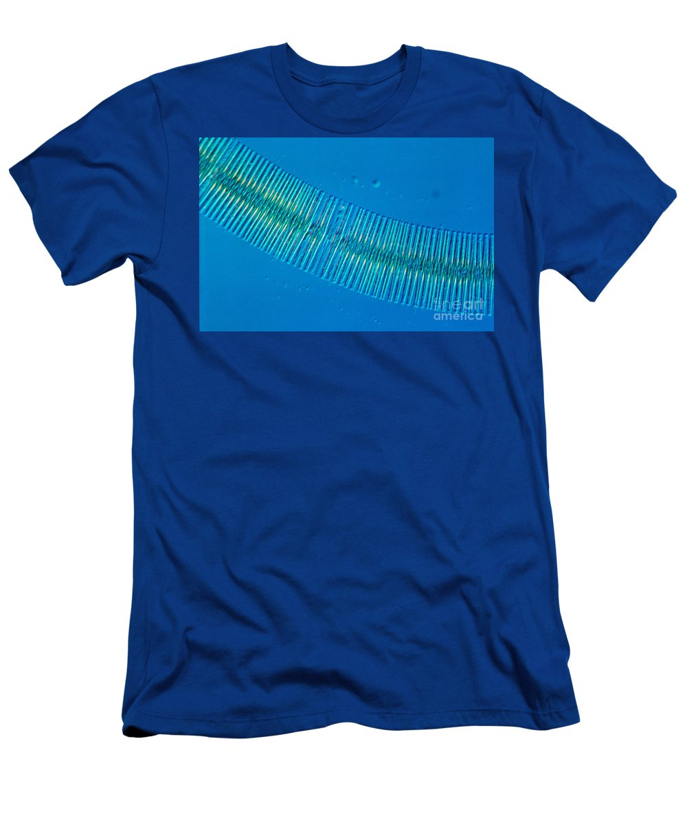 Nomarski Interference Contrast Men's T-Shirt (Athletic Fit) featuring the photograph Diatonaceae by M. I. Walker