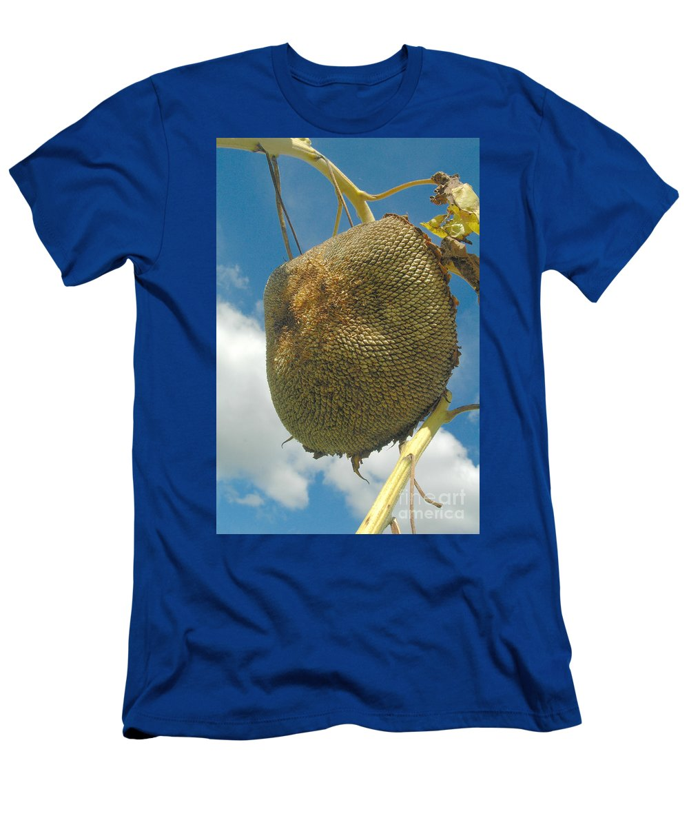 Sunflower Men's T-Shirt (Athletic Fit) featuring the photograph Dinner Is Served by Trish Hale