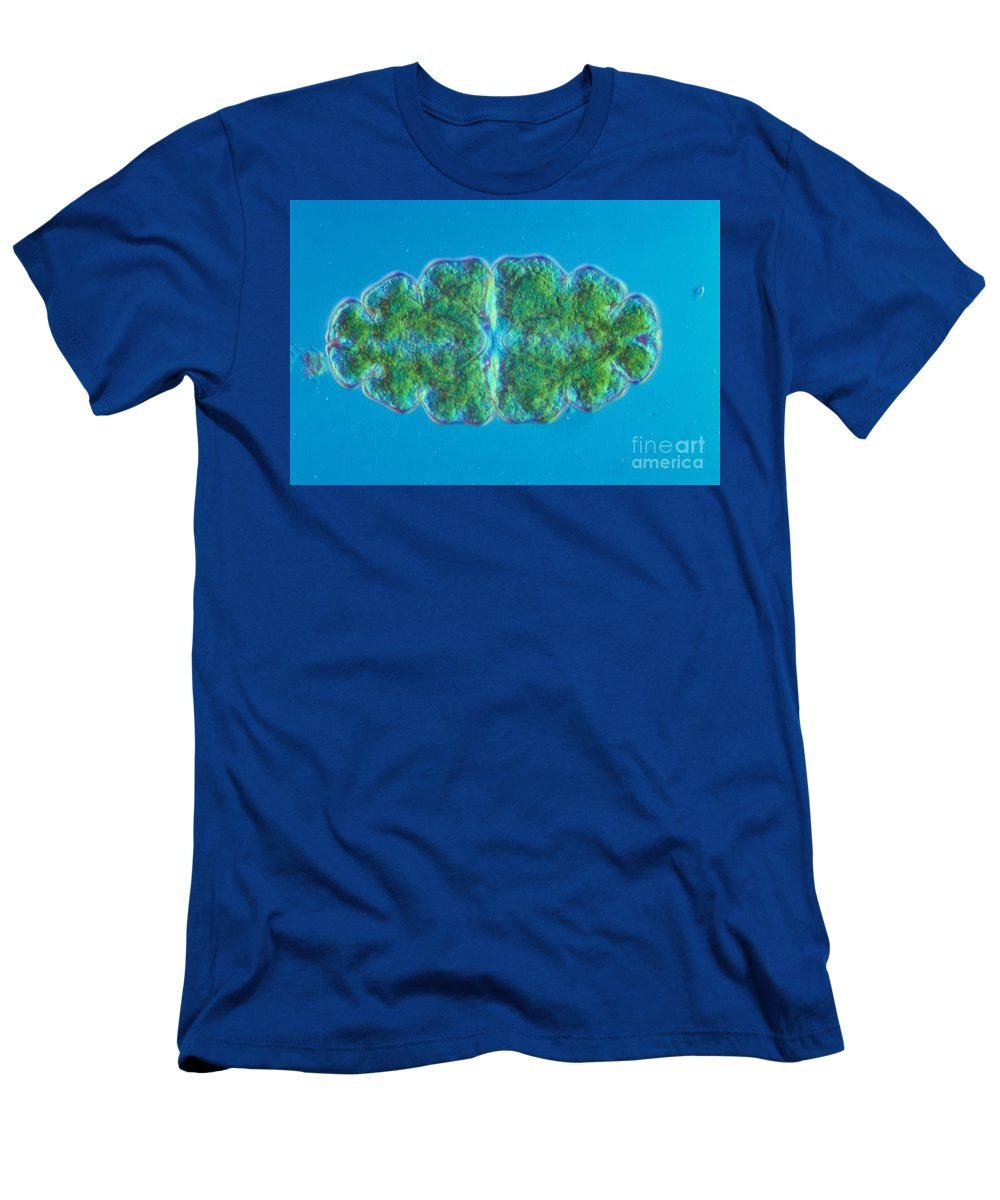 Science Men's T-Shirt (Athletic Fit) featuring the photograph Euastrum Sp. Algae Lm by M. I. Walker