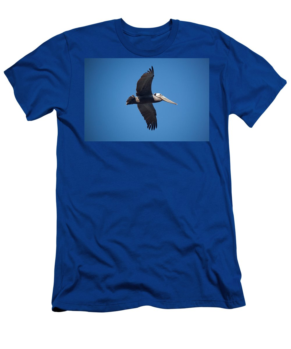 Pelican T-Shirt featuring the photograph flying Pelican by Ralf Kaiser