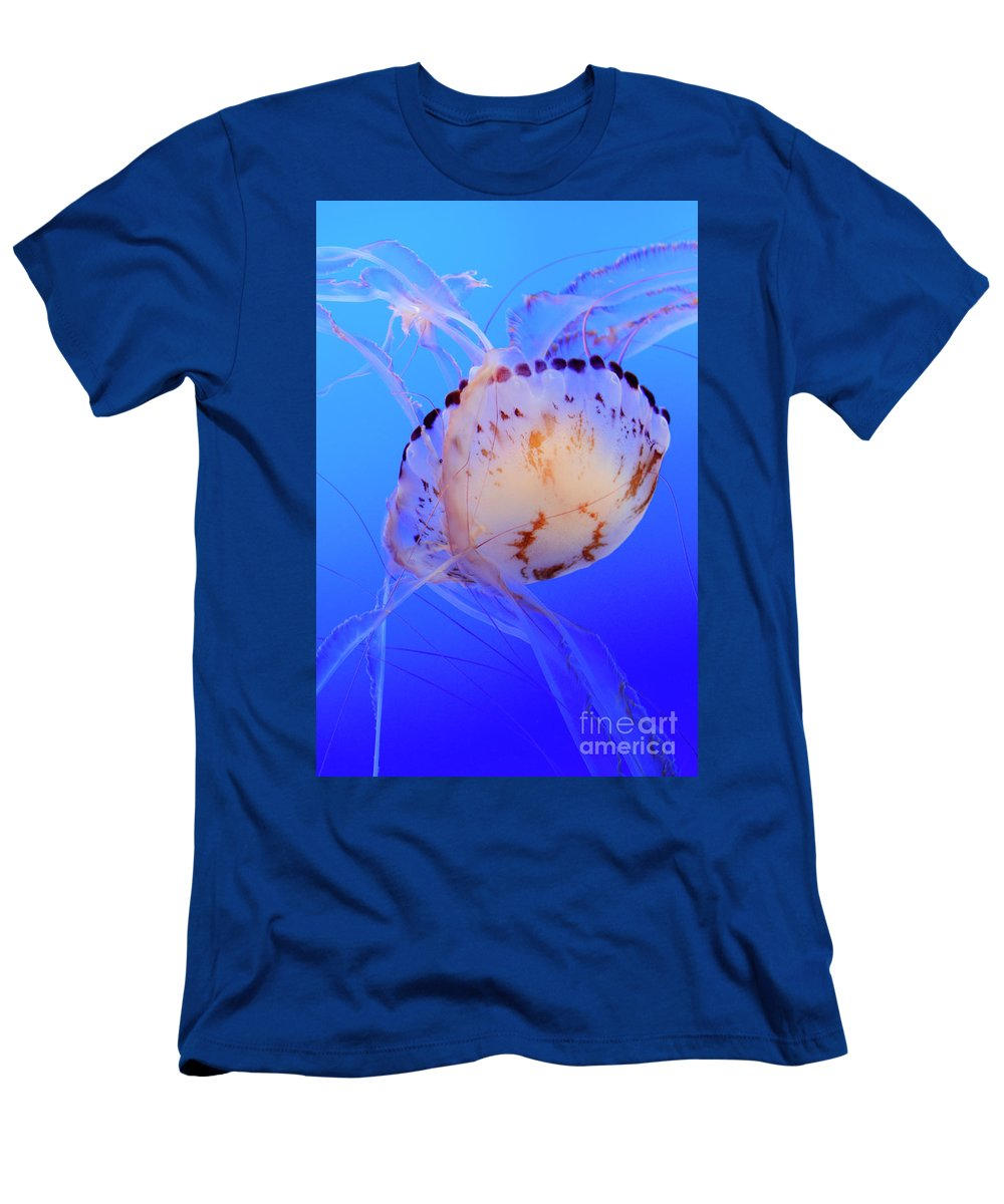 Jellyfish Men's T-Shirt (Athletic Fit) featuring the photograph Jellyfish 5 by Bob Christopher
