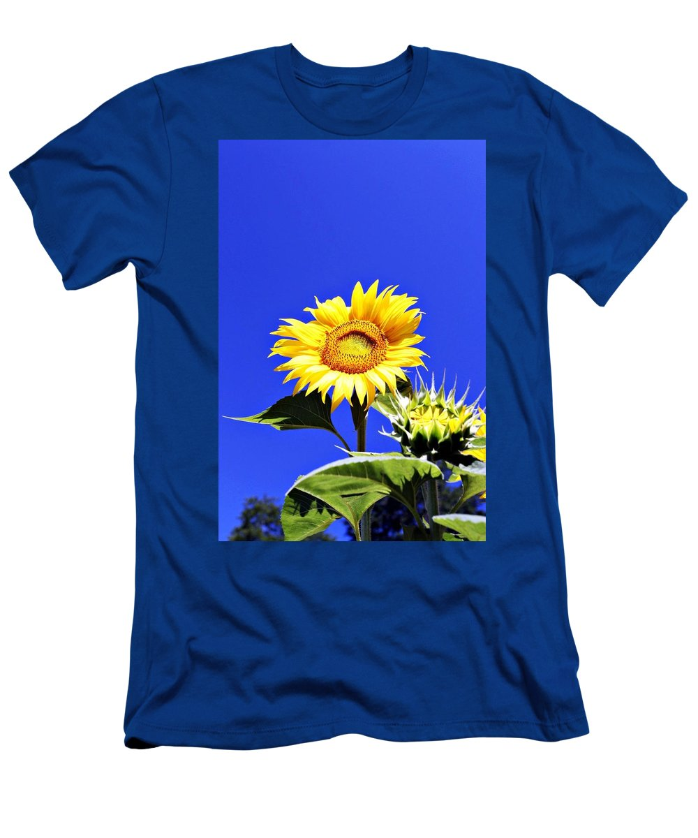 Sunflower Men's T-Shirt (Athletic Fit) featuring the photograph Let The Sun Shine In by Erin Rosenblum