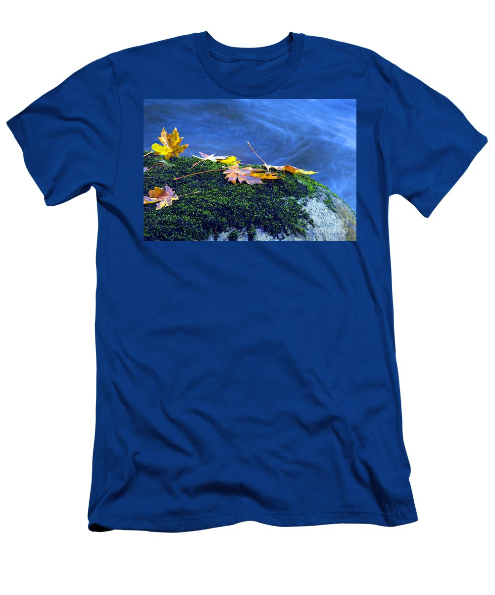 Maple Leaves Men's T-Shirt (Athletic Fit) featuring the photograph Maple Leaves On Mossy Rock by Sharon Talson