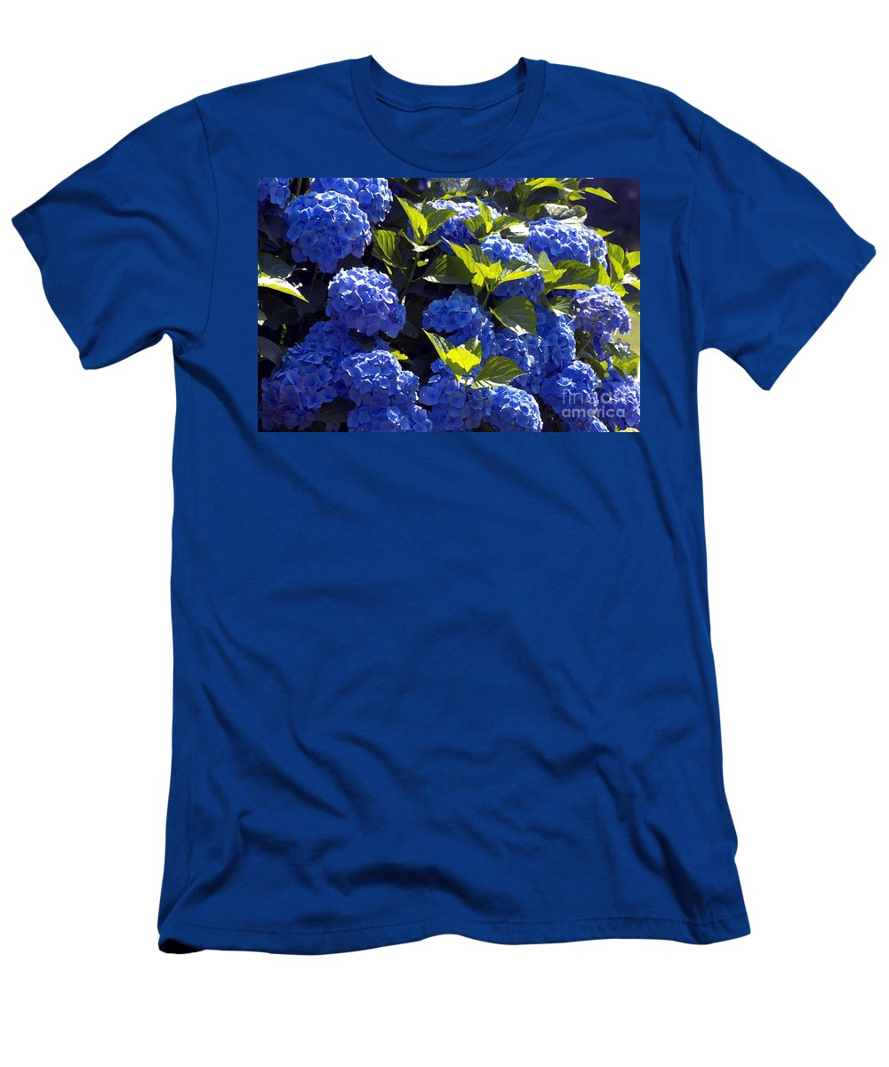 Mophead Hydrangeas Men's T-Shirt (Athletic Fit) featuring the photograph Mophead Hydrangeas Dry Brushed by Sharon Talson