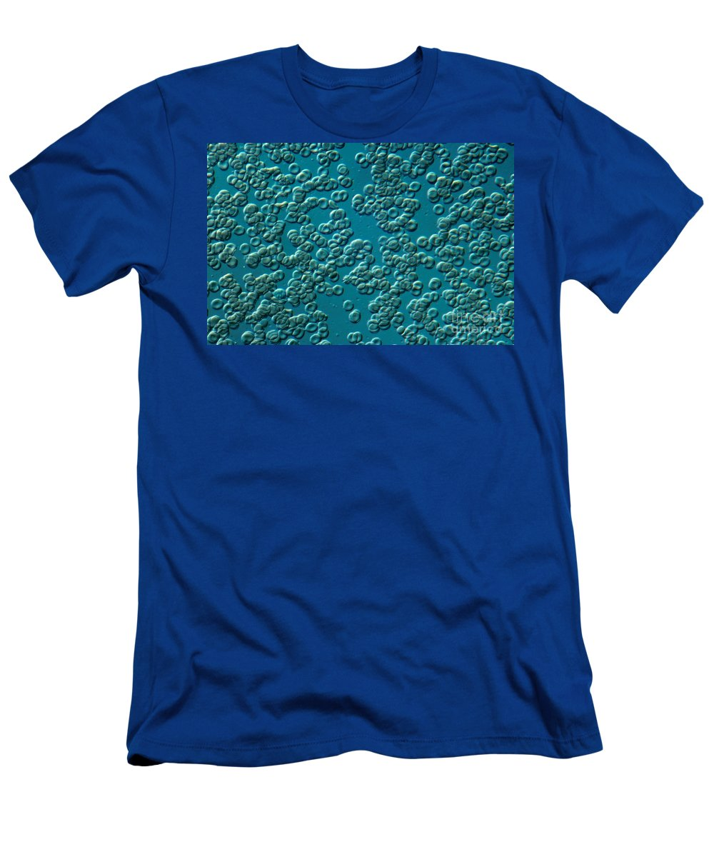 Differential Interference Contrast Microscopy Men's T-Shirt (Athletic Fit) featuring the photograph Nomarski Interference by M. I. Walker