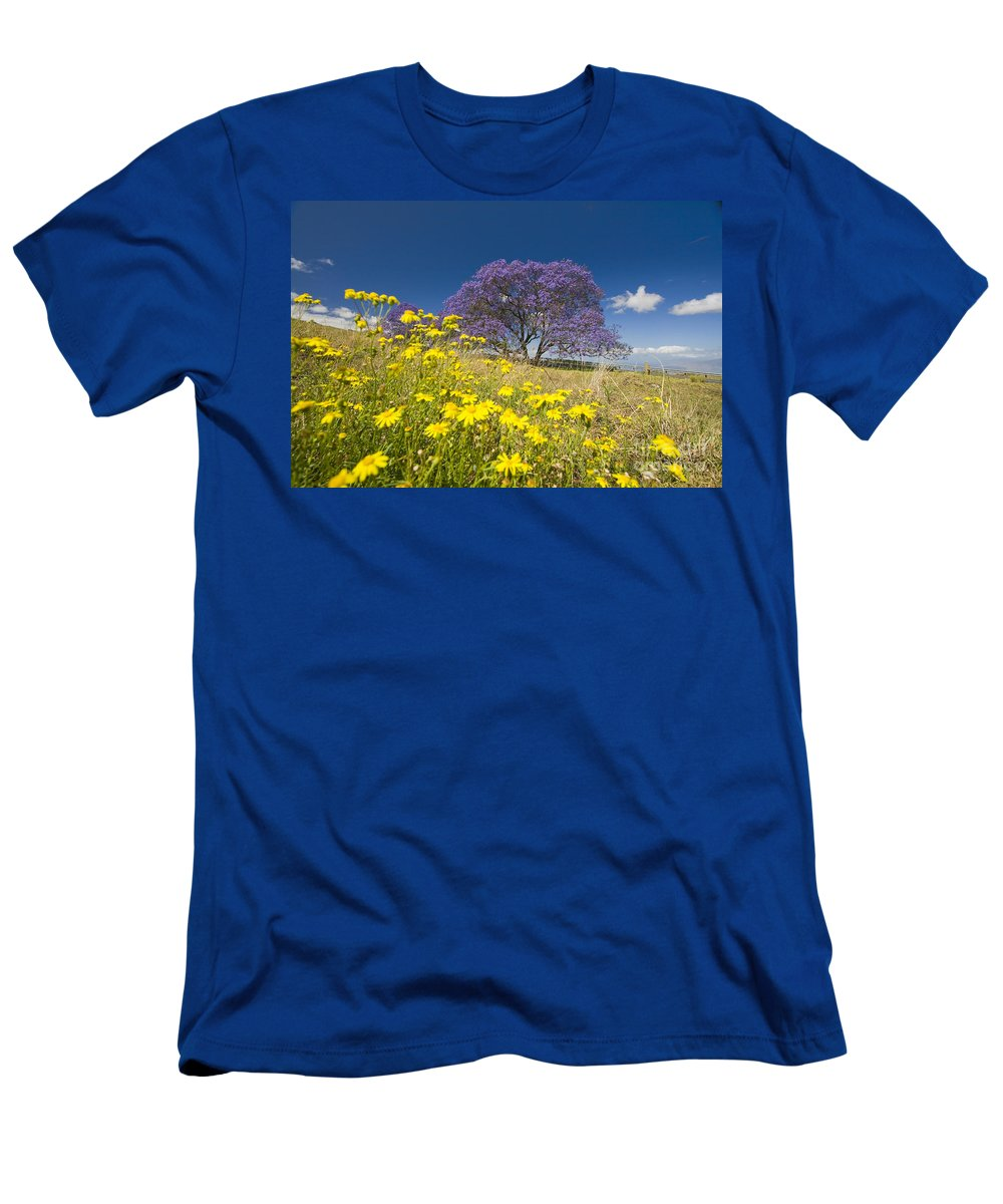 Afternoon Men's T-Shirt (Athletic Fit) featuring the photograph Blossoming Jacaranda by Dave Fleetham - Printscapes