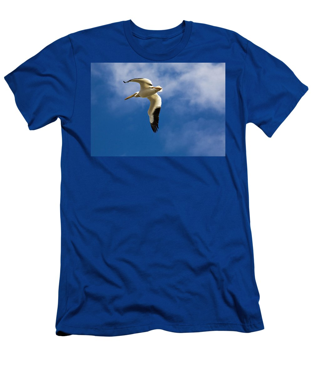 Bird Men's T-Shirt (Athletic Fit) featuring the photograph American White Pelican In Flight by Marilyn Hunt