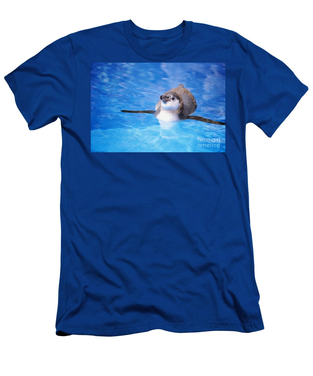 Animal Art Men's T-Shirt (Athletic Fit) featuring the photograph Baby Penguin Floating by Tomas del Amo - Printscapes