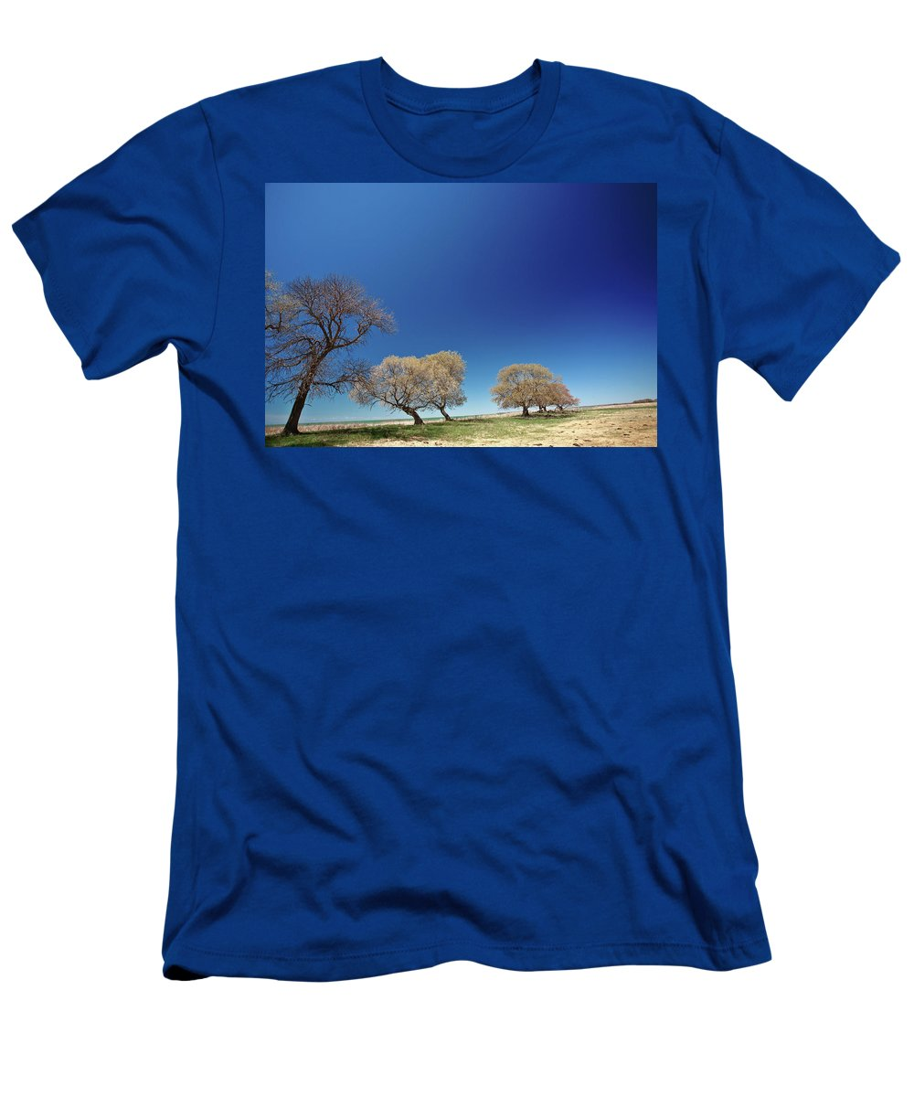 Bare Men's T-Shirt (Athletic Fit) featuring the digital art Bare Trees Along Shore Of Lake Manitoba by Mark Duffy