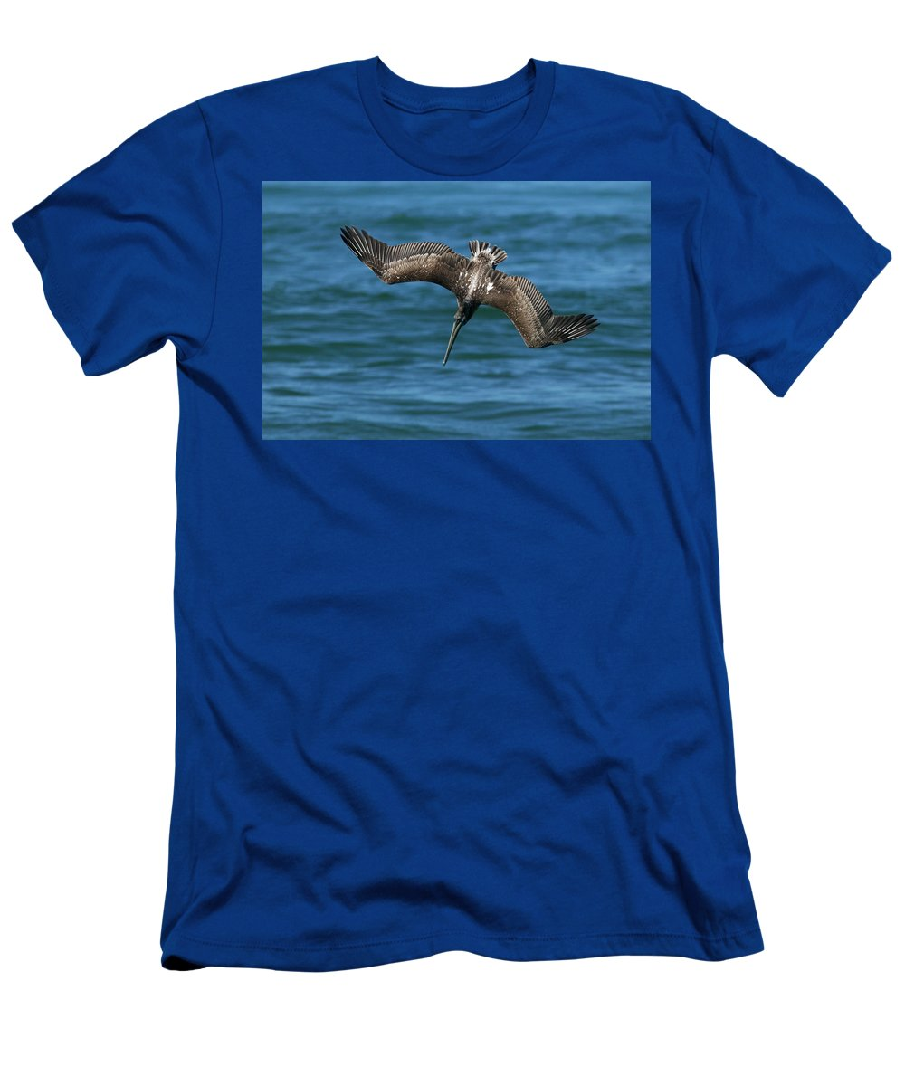 Brown Pelican Men's T-Shirt (Athletic Fit) featuring the photograph Brown Pelican Fishing by Randall Ingalls