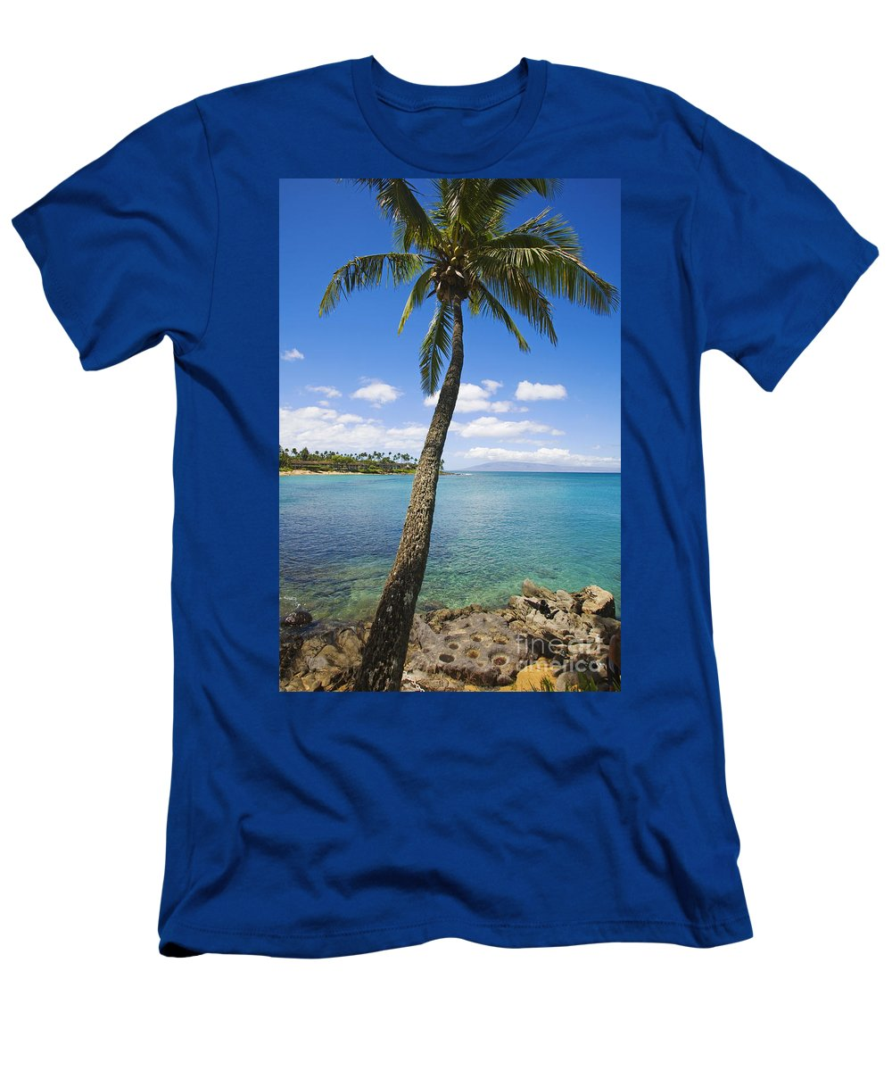 Bay Men's T-Shirt (Athletic Fit) featuring the photograph Coconut Tree by Ron Dahlquist - Printscapes