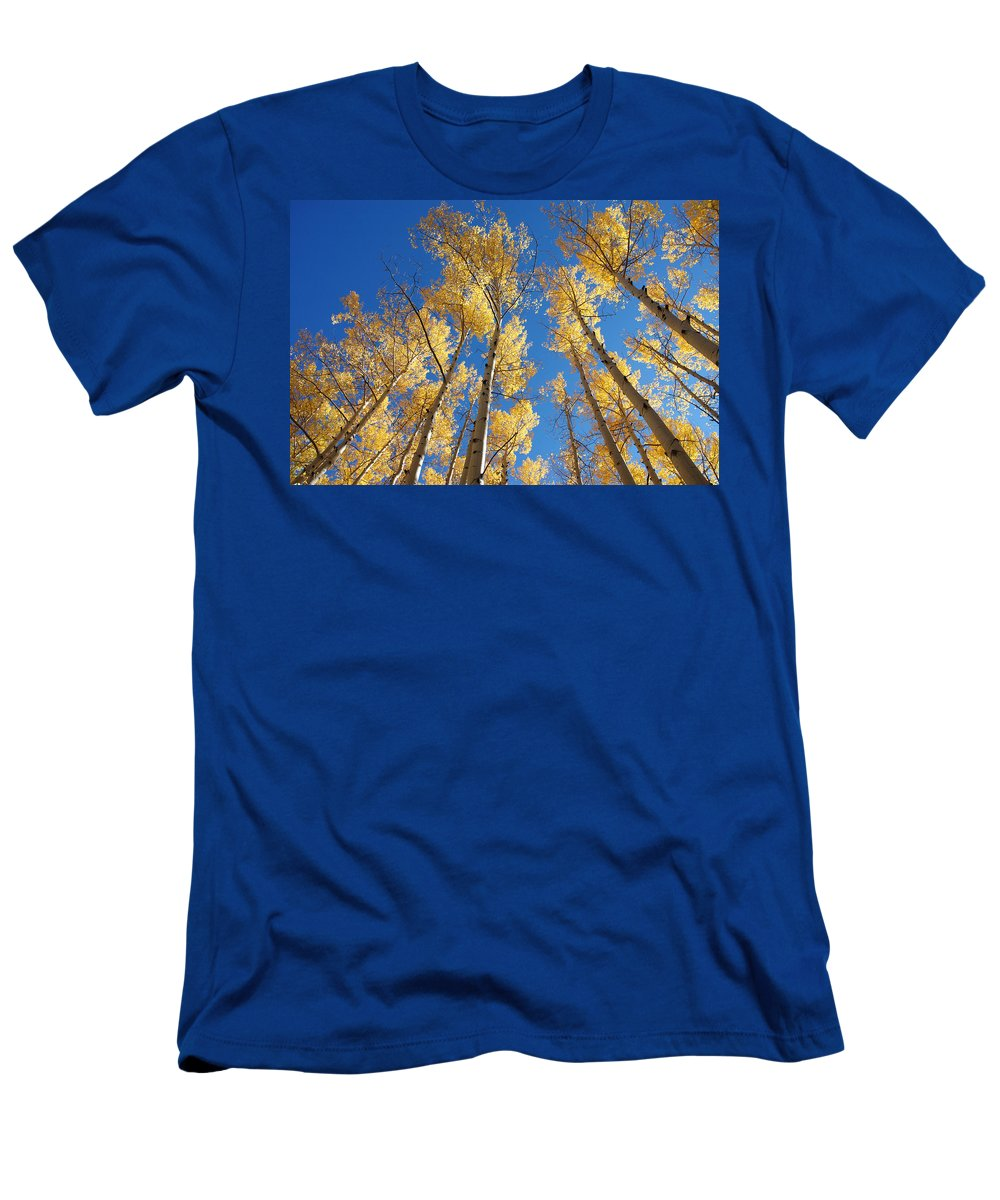 Aspen Men's T-Shirt (Athletic Fit) featuring the photograph Colorado Aspen by Jerry McElroy