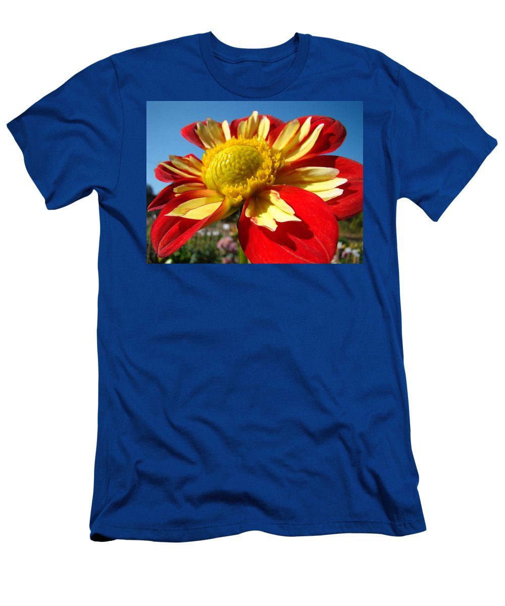 Dahlia Men's T-Shirt (Athletic Fit) featuring the photograph Dahlia Flower Art Prints Canvas Red Yellow Dahlias Baslee Troutman by Baslee Troutman