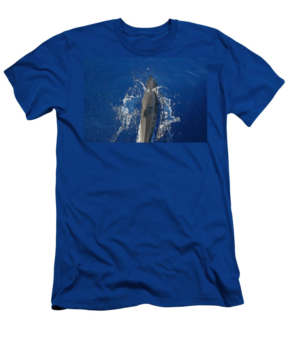 Dolphin Men's T-Shirt (Athletic Fit) featuring the photograph Dolphin by J R Seymour