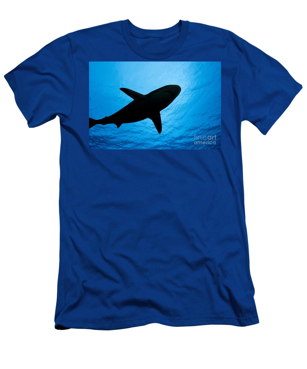Amblyrhynchos Men's T-Shirt (Athletic Fit) featuring the photograph Grey Reef Shark Silhouette by Dave Fleetham - Printscapes