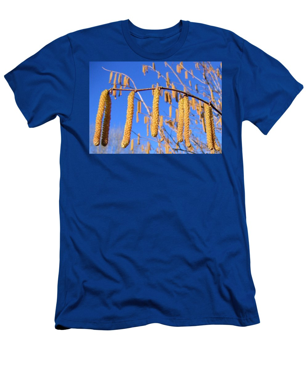 Hazelnut Tree Men's T-Shirt (Athletic Fit) featuring the photograph Hazelnut Tassels by Will Borden