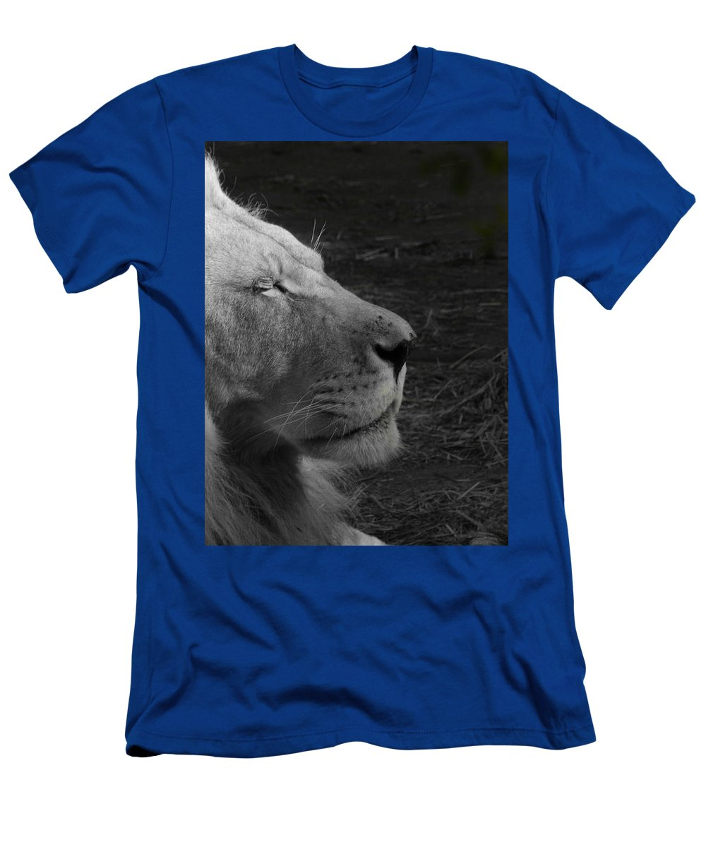 Men's T-Shirt (Athletic Fit) featuring the photograph Lion by Kevin Rios