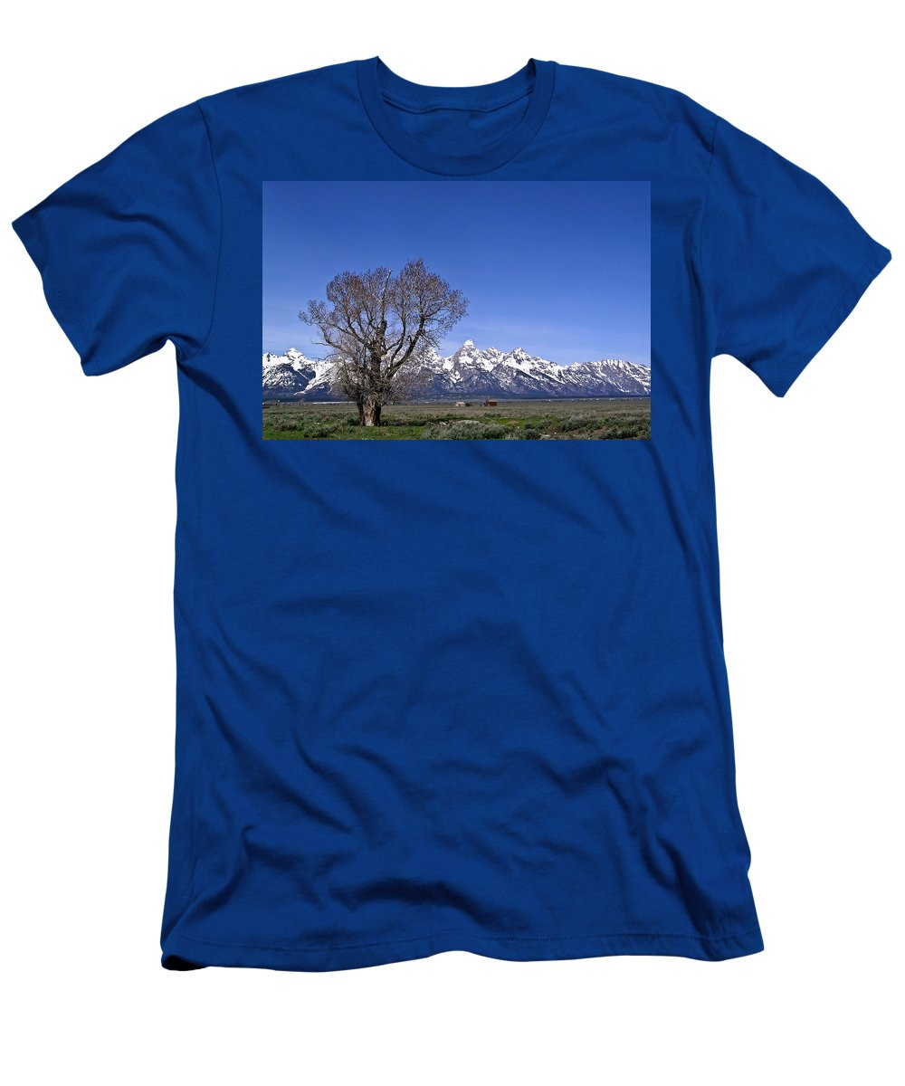 Tree Men's T-Shirt (Athletic Fit) featuring the photograph Lone Tree At Tetons by Douglas Barnett