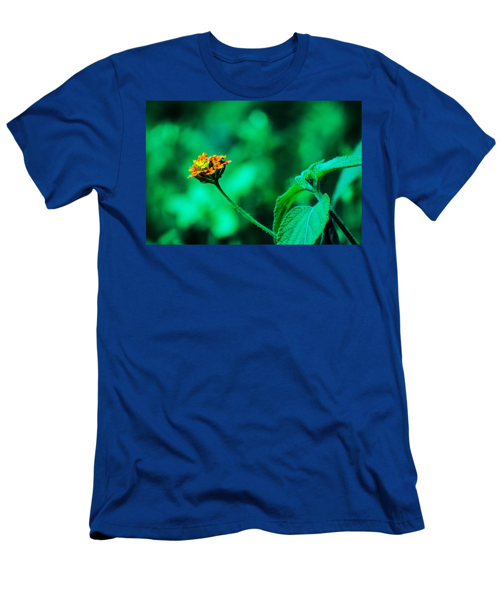 Flor Men's T-Shirt (Athletic Fit) featuring the photograph Orange Flower by Totto Ponce