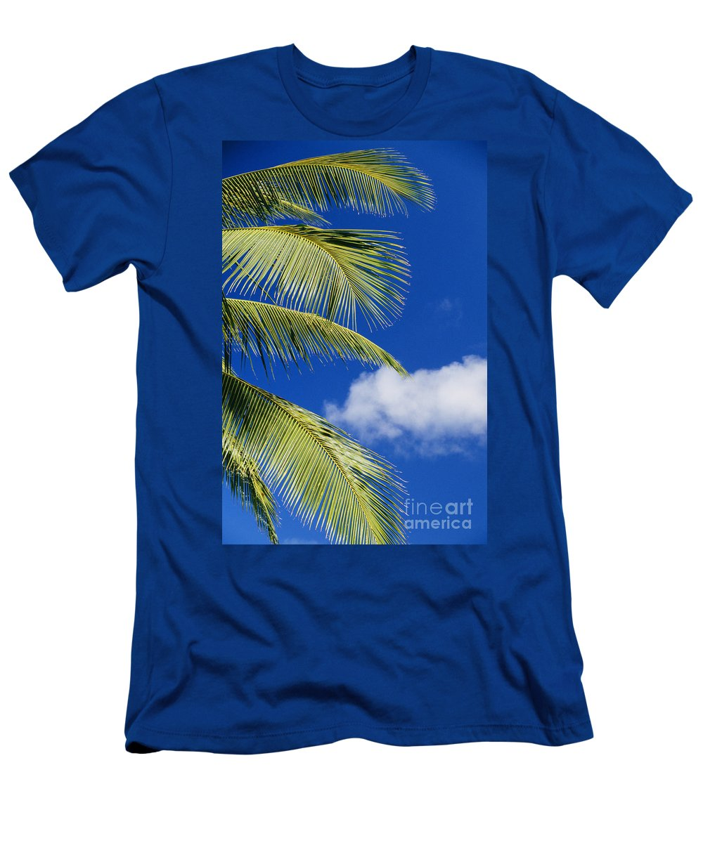 Afternoon Men's T-Shirt (Athletic Fit) featuring the photograph Palm Abstract by Brent Black - Printscapes