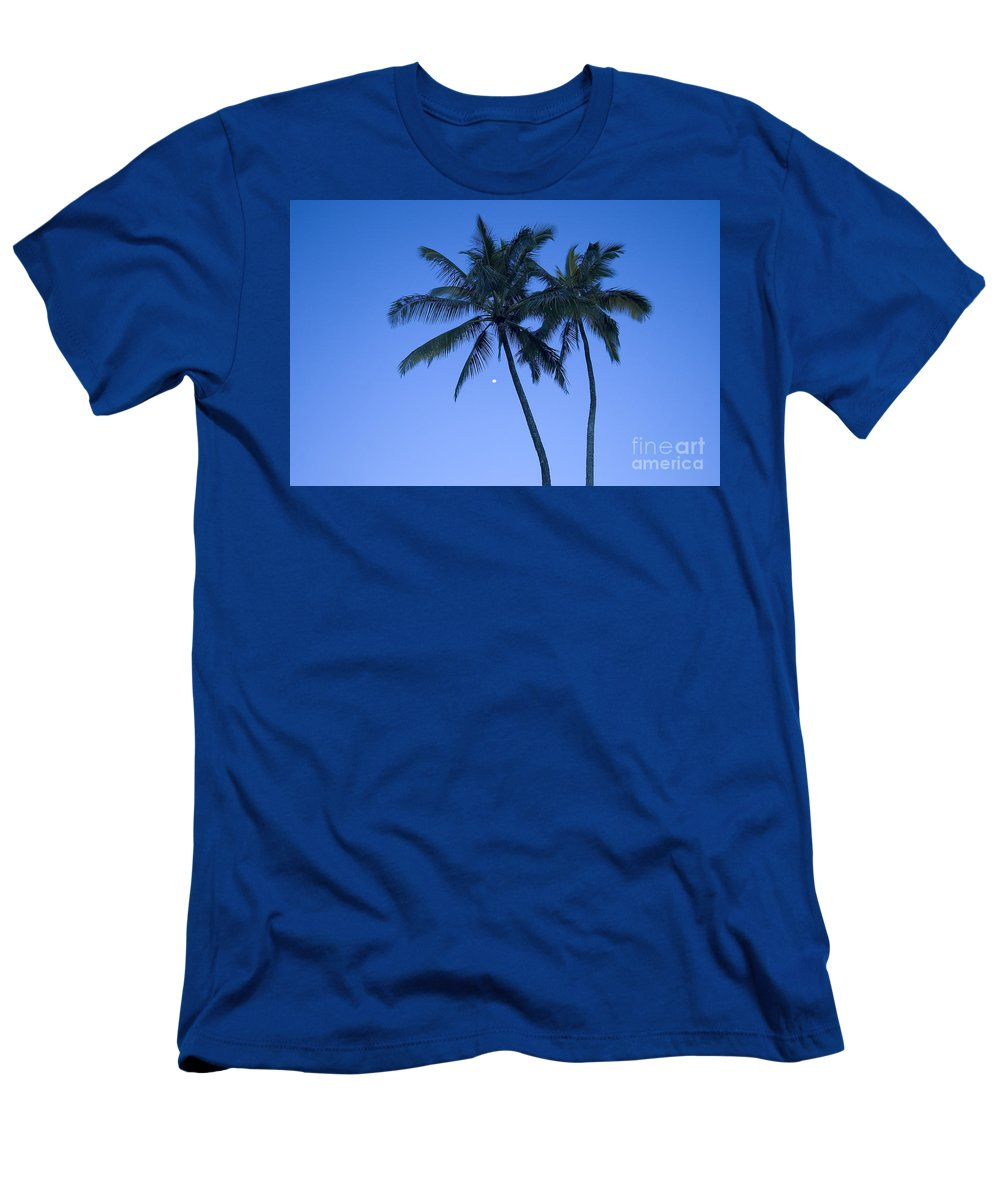 Afternoon Men's T-Shirt (Athletic Fit) featuring the photograph Palms And Blue Sky by Ron Dahlquist - Printscapes