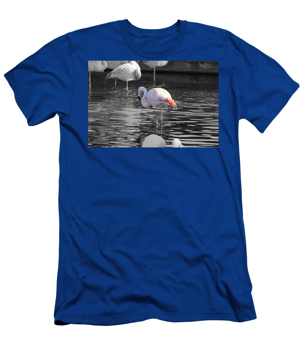 Palm Desert California T-Shirt featuring the photograph Pinky by Colleen Cornelius