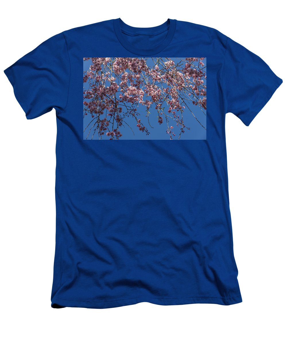 Georgia Mizuleva Men's T-Shirt (Athletic Fit) featuring the photograph Pretty In Pink - A Flowering Cherry Tree And Blue Spring Sky by Georgia Mizuleva
