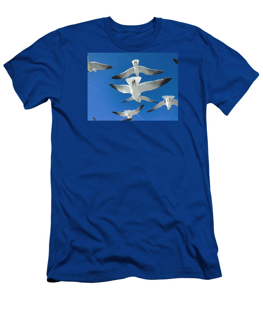 Seagulls Men's T-Shirt (Athletic Fit) featuring the photograph Seagulls #4 by Bonita Barlow