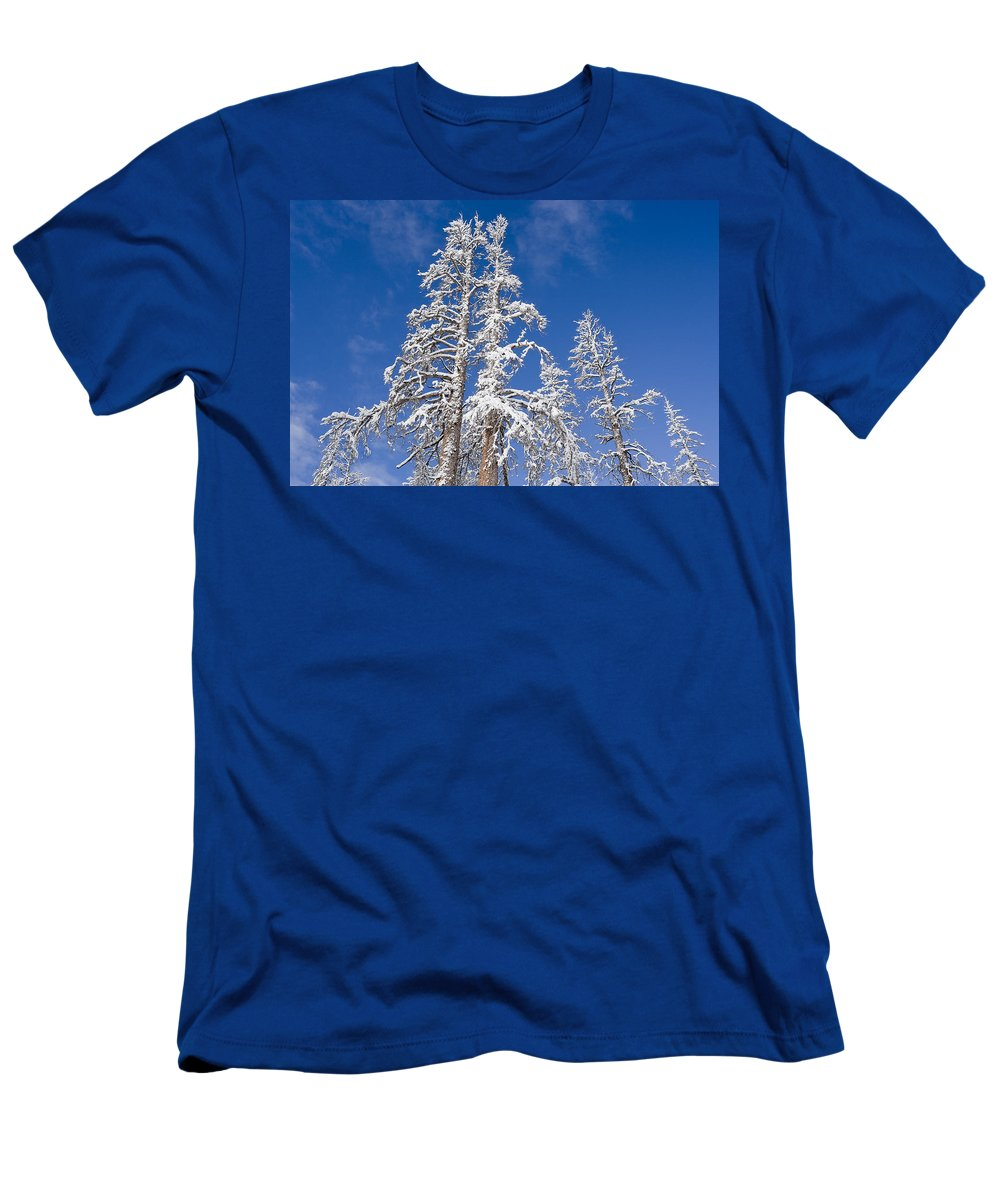 Winter Men's T-Shirt (Athletic Fit) featuring the photograph Snow Covered by Kelley King