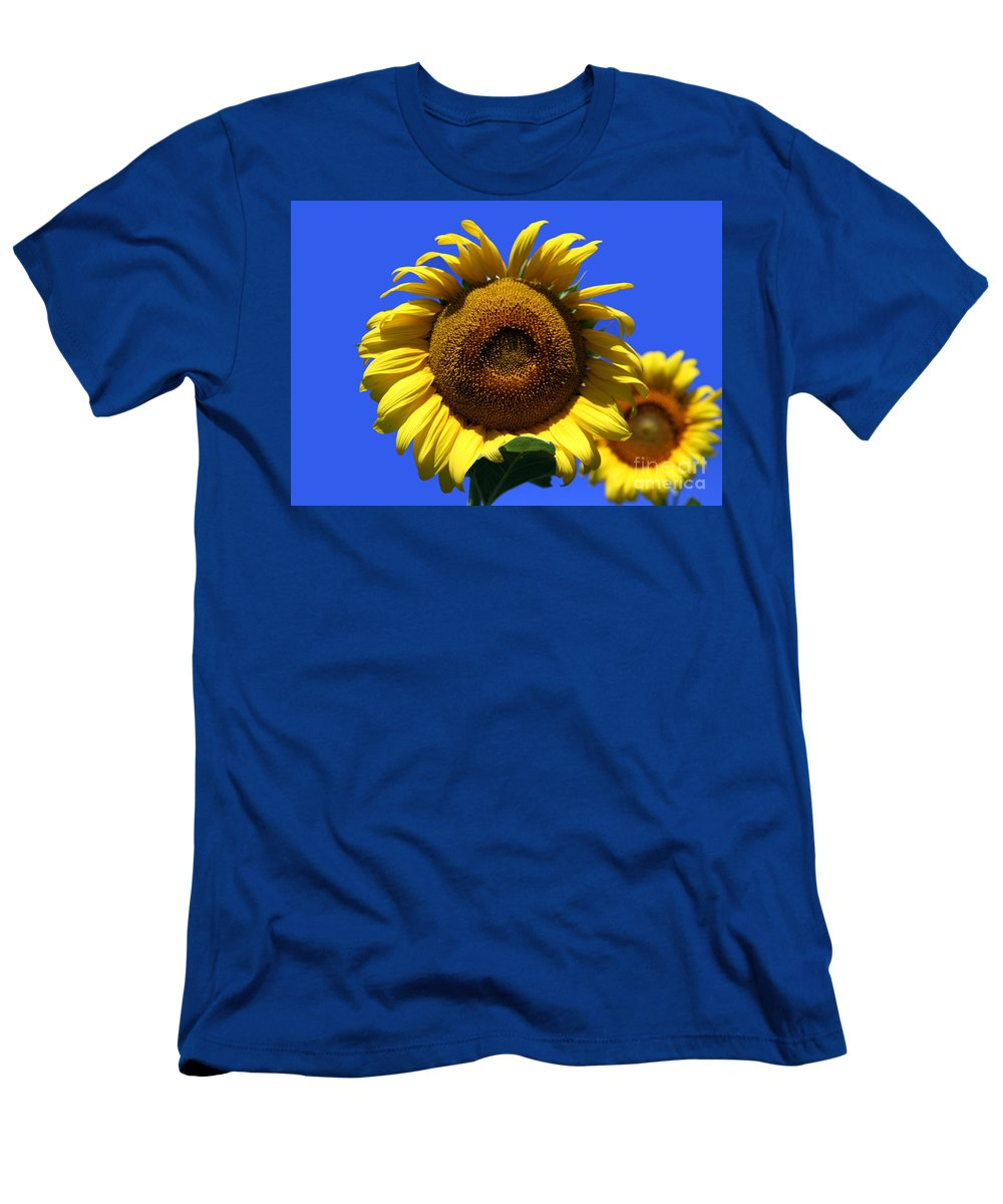 Sunflowers Men's T-Shirt (Athletic Fit) featuring the photograph Sunflower Series 09 by Amanda Barcon