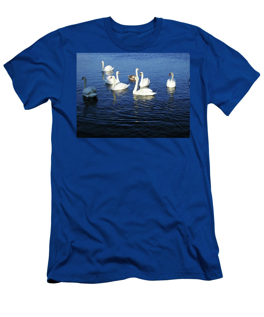 Seascape Men's T-Shirt (Athletic Fit) featuring the photograph Swans Sligo Ireland by Louise Macarthur Art and Photography
