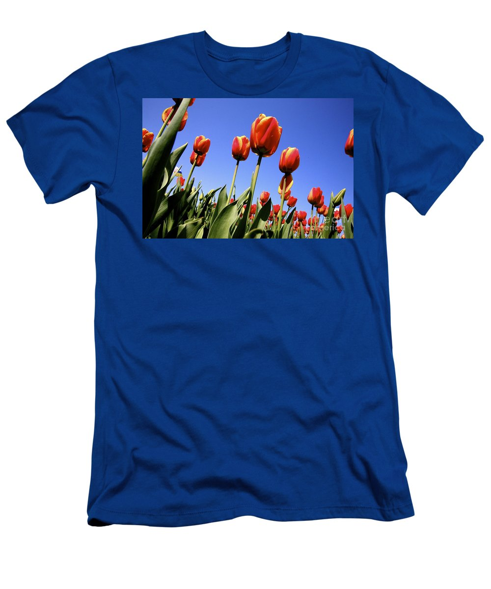 Tulips Men's T-Shirt (Athletic Fit) featuring the photograph Tulips Time 3 by Robert Pearson