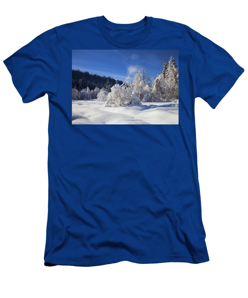 Snow T-Shirt featuring the photograph Winter Blanket by Mike Dawson