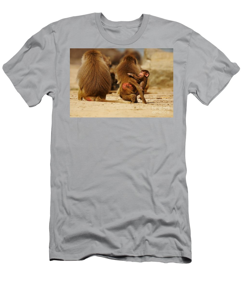 Africa Men's T-Shirt (Athletic Fit) featuring the photograph Baboon Family In The Desert by Nick Biemans
